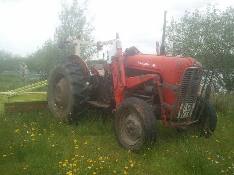 1959 Massey Ferguson 35 3 cylinder For Sale (picture 1 of 5)