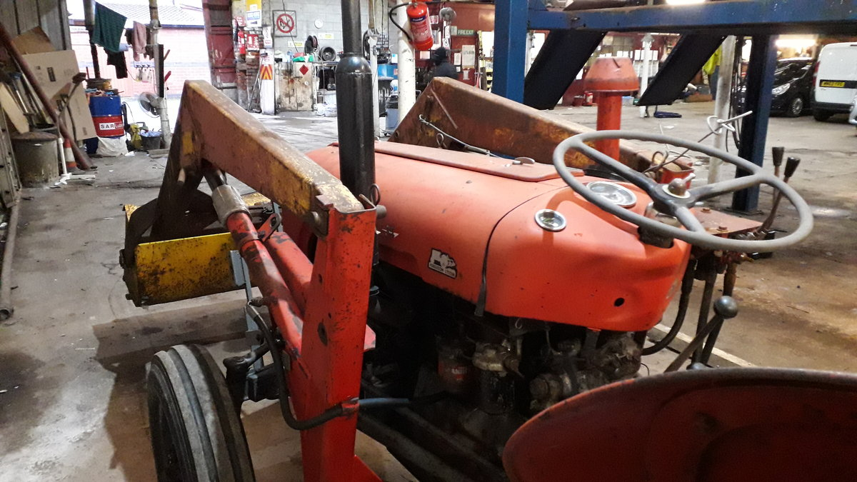 1959 Massey Ferguson 35 3 cylinder For Sale (picture 5 of 5)