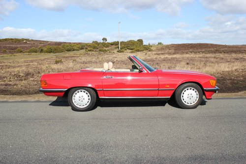 Mercedes 300SL 1986 Stunning Condition and Colour For Sale (picture 2 of 6)