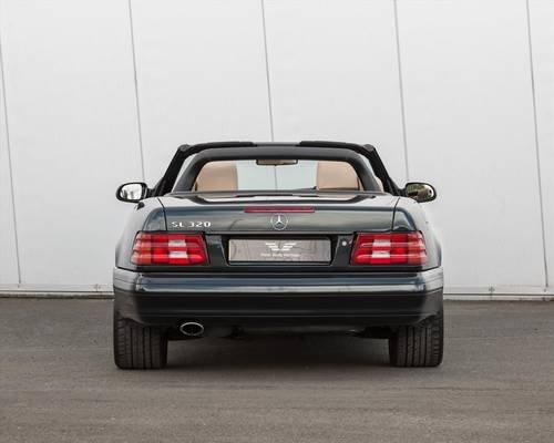 2001 SL320 V6 2dr Auto Designo Edition- 1 of 50 Manufactured For Sale (picture 4 of 6)