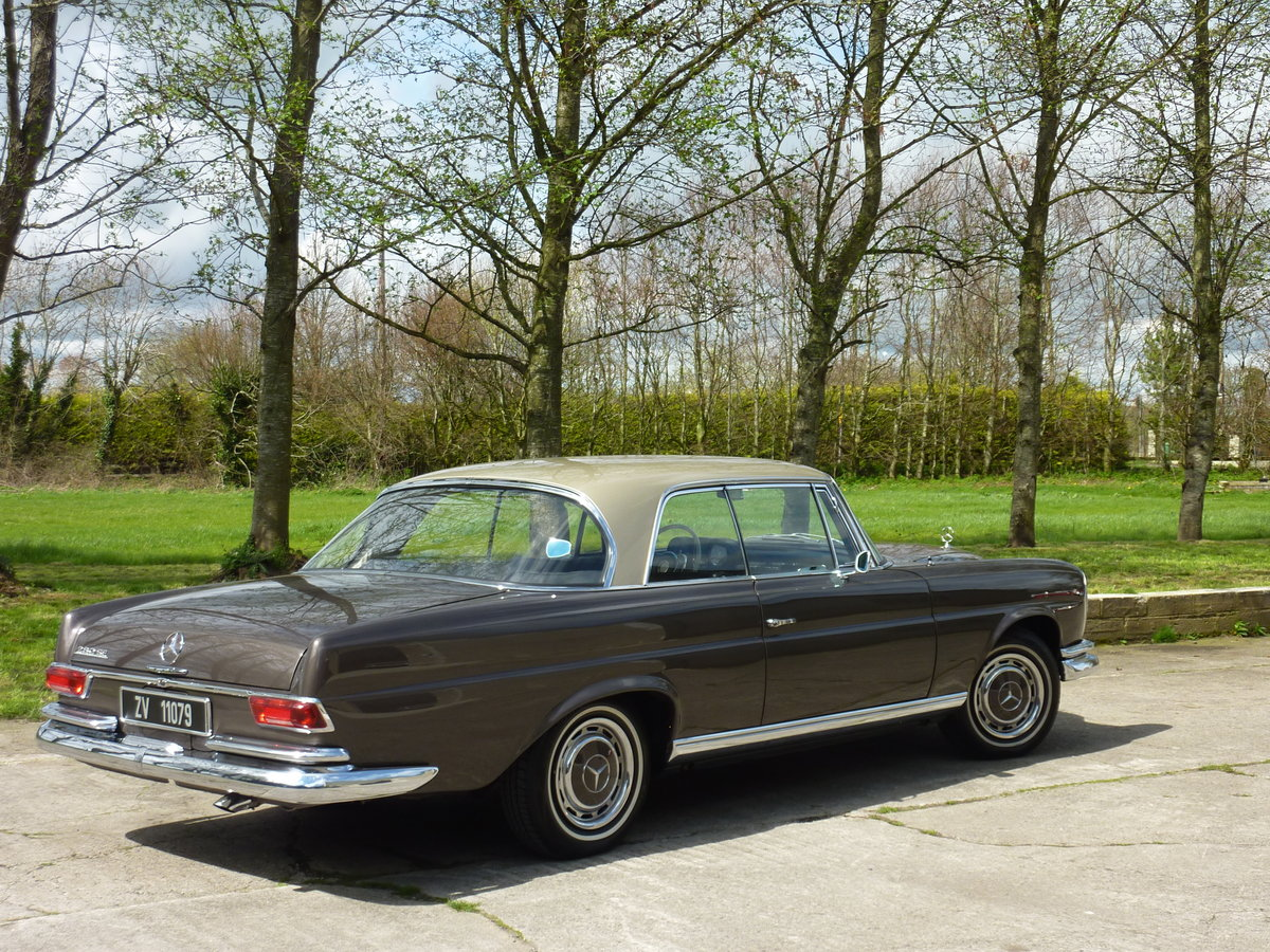 1965 Mercedes W111 Coupe CONCOURS condition For Sale (picture 2 of 6)