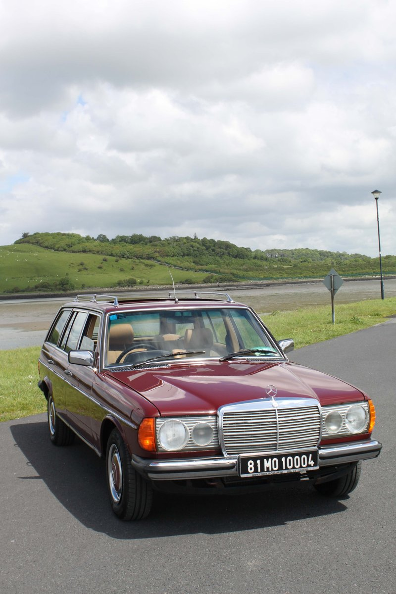The Jazzy Badger – 1981 MERCEDES W123 230 TE EST For Sale (picture 2 of 6)