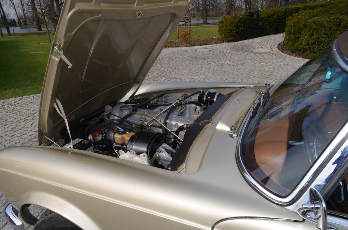 1967 Mercedes 250SL Pagoda Frame Off restored For Sale (picture 5 of 6)