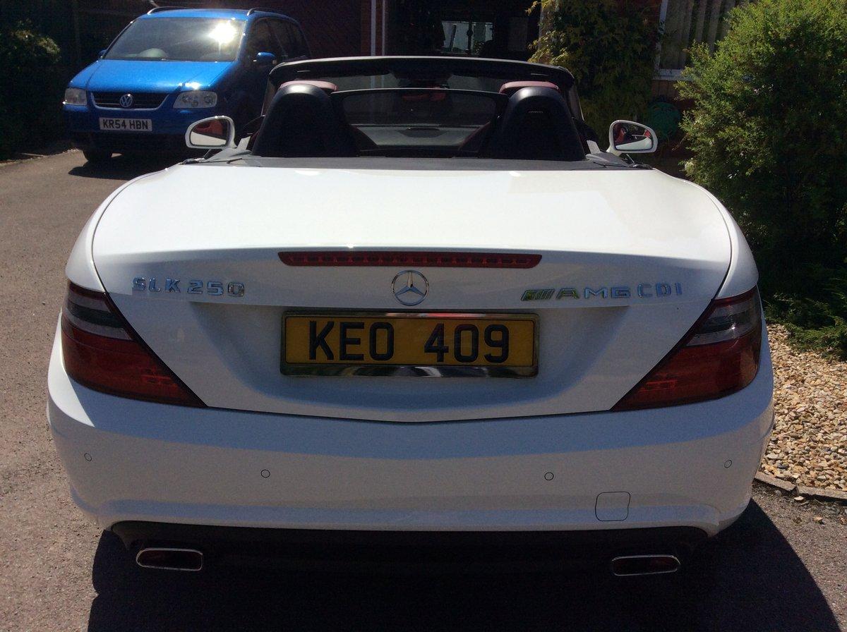 2014 Mercedes SLK250CDI For Sale (picture 4 of 6)