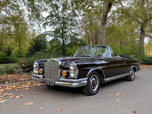 Picture of 1966 Mercedes-Benz 250SE For Sale