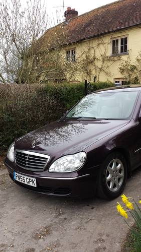 2005 Absolutely Stunning Mercedes S320 CDI Automatic For Sale (picture 6 of 6)