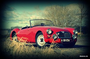 MGA 1500 Roadster early 1955 For Sale