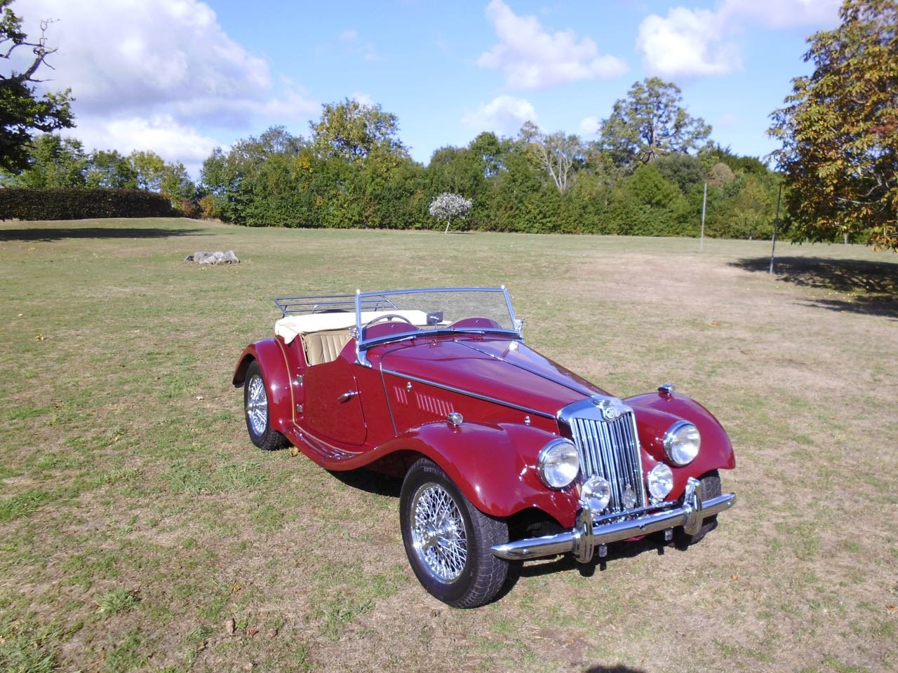 1954 concours MG TF Midget For Sale (picture 1 of 6)