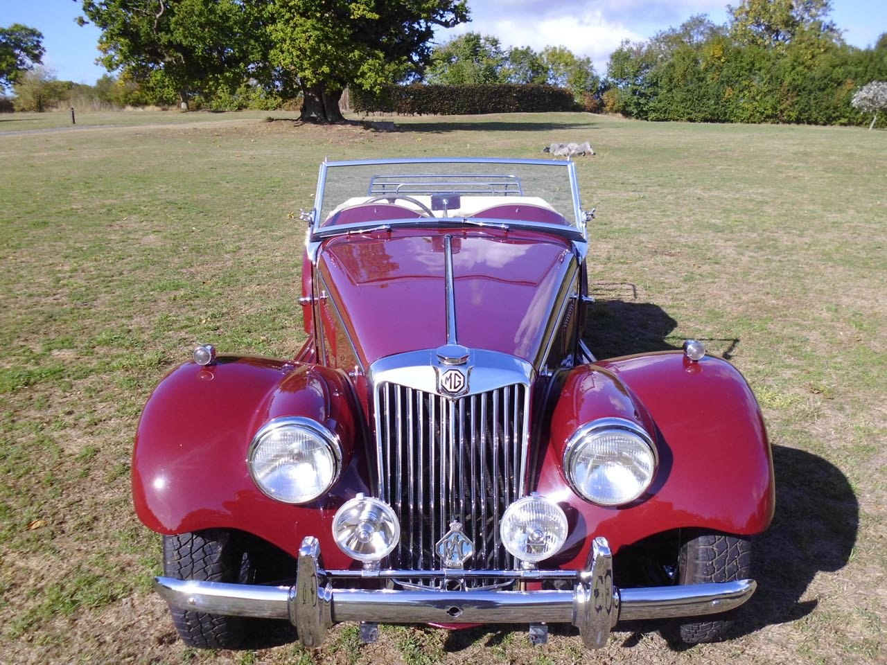 1954 concours MG TF Midget For Sale (picture 2 of 6)