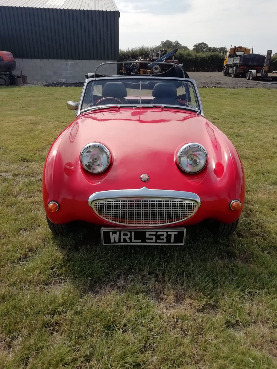 1979 Austin Healey Sprite Mk1 Frogeye Replica For Sale (picture 6 of 6)