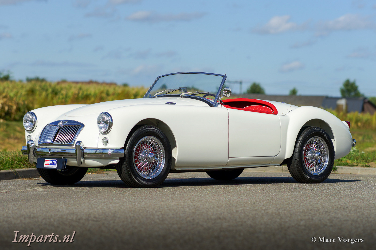1959 Excellent MGA 1500 Roadster (LHD) For Sale (picture 1 of 6)