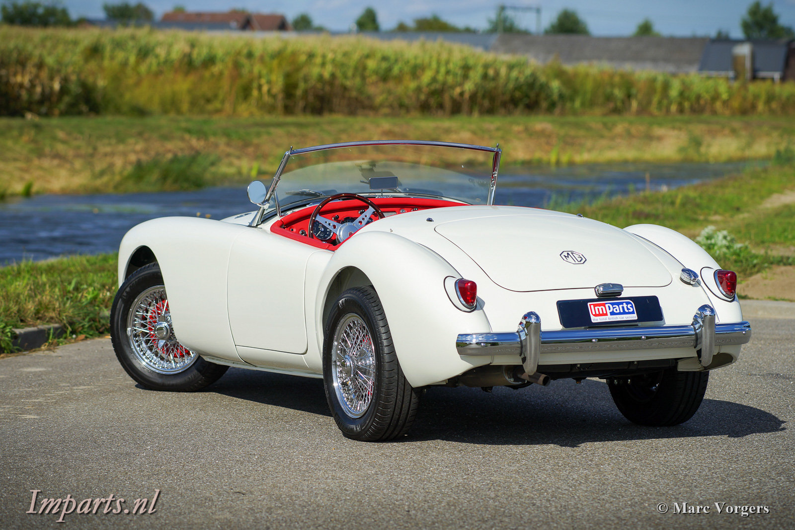 1959 Excellent MGA 1500 Roadster (LHD) For Sale (picture 5 of 6)