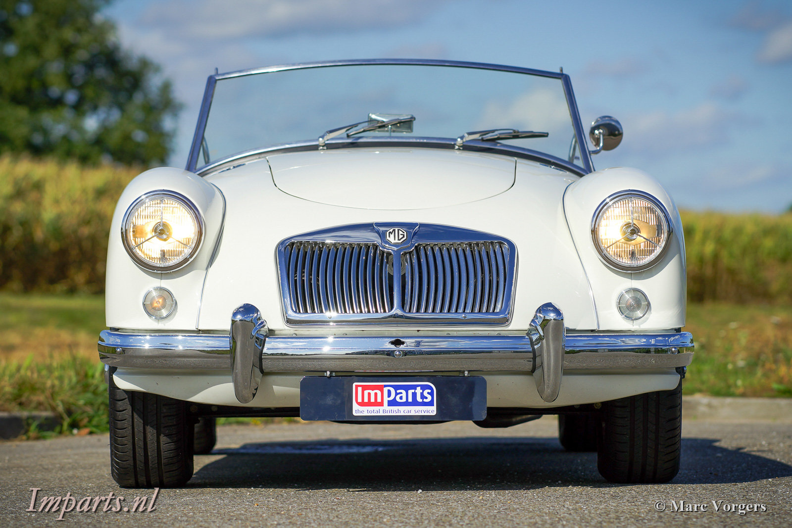 1959 Excellent MGA 1500 Roadster (LHD) For Sale (picture 6 of 6)