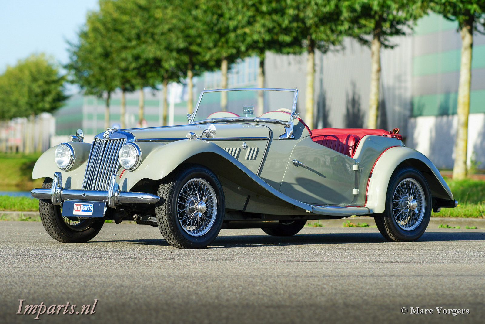 1954 Excellent classic MG TF 1250 (LHD) For Sale (picture 1 of 6)