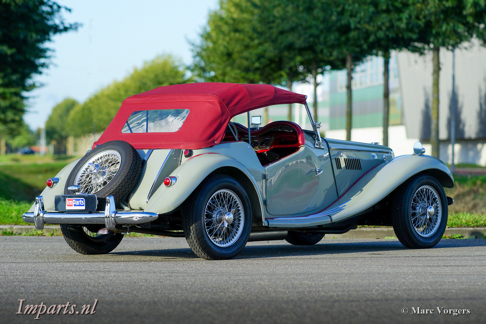 1954 Excellent classic MG TF 1250 (LHD) For Sale (picture 5 of 6)