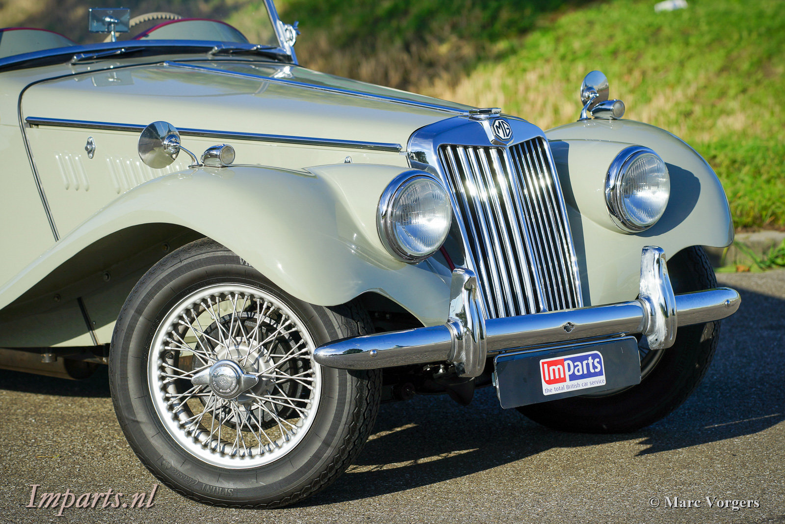 1954 Excellent classic MG TF 1250 (LHD) For Sale (picture 6 of 6)