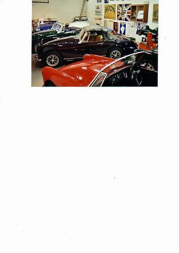 MG Midget and Sprite Specialist  (picture 1 of 2)