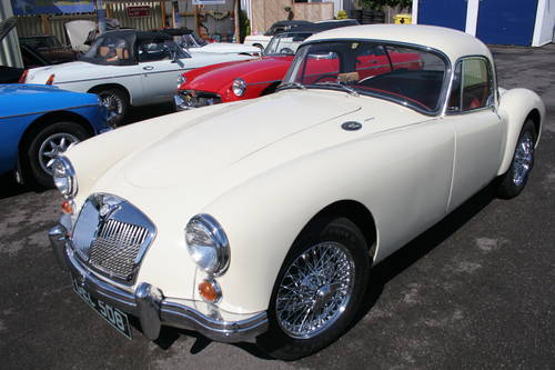 LARGEST MG SALES SELECTION IN THE UK.... For Sale (picture 4 of 6)