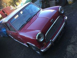 Early 1961 Mk1 mini For Sale