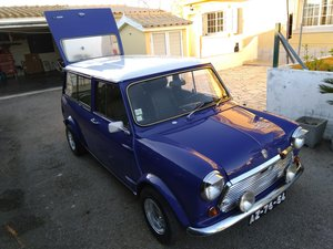 1977 MINI IMA VAN SINGLE REAR UPPER DOOR LHD