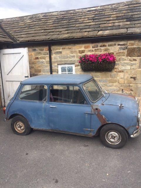 1967 mini MK1 Genuine Barn Find Classic  For Sale (picture 2 of 6)