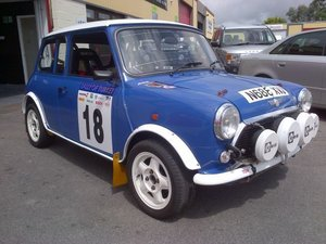 Mini 1.3i Group A Rally Car