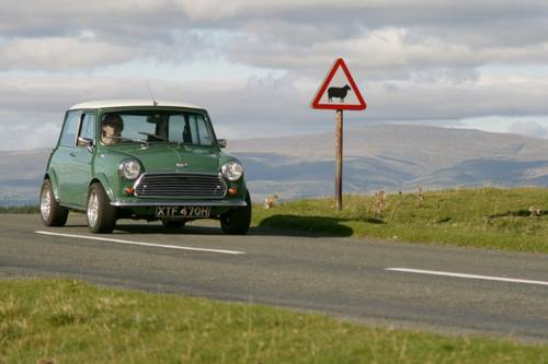 1970 Classic Mini Cooper S Mk2 For Hire (picture 2 of 2)