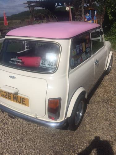1989 Mini sky rose SOLD (picture 3 of 6)