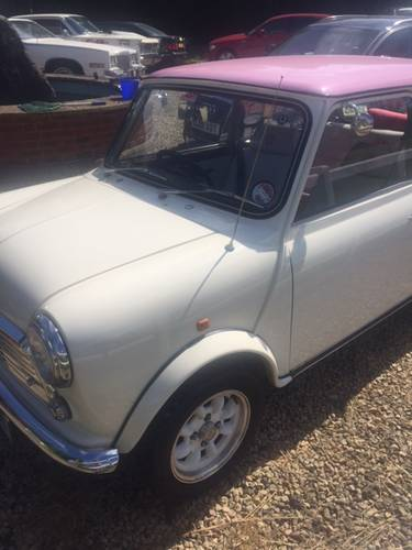 1989 Mini sky rose SOLD (picture 5 of 6)