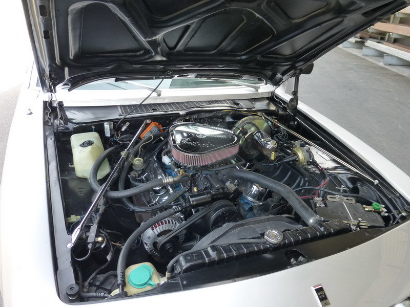 1979 Monteverdi Sierra - very rare Swiss hand made car For Sale (picture 3 of 6)