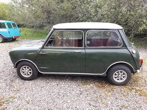 1966 Morris Mini Cooper Mk1 For Sale