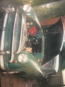 1955 Morris oxford For Sale