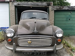 Moggy minor Good example