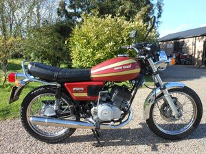 1981 Moto Guzzi For Sale