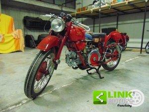 Moto Guzzi Falcone 500, anno 1953, targa e documenti origin