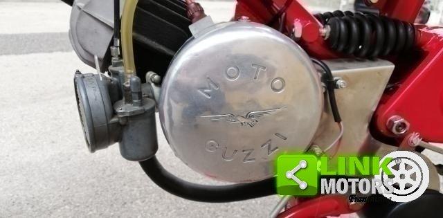 1957 Moto Guzzi Cardellino Mod. B For Sale (picture 6 of 6)