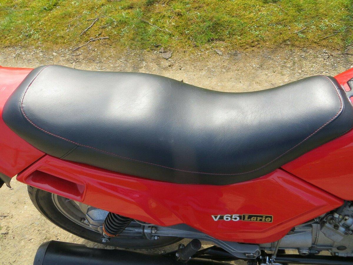Moto Guzzi Lario 1982 8 valve classic 60hp For Sale (picture 4 of 4)