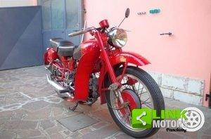Moto Guzzi Airone 250 Sport - Anno 1954 - DOC. & TARGA Orig For Sale