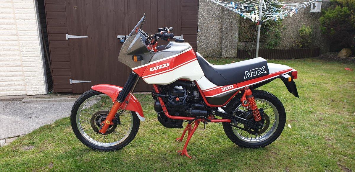 1992 Very rare moto guzzi NTX350.  11500 MILES. For Sale (picture 2 of 6)