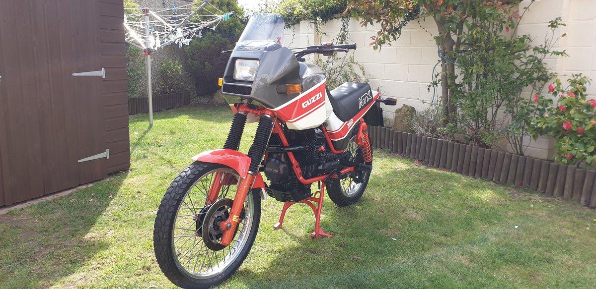 1992 Very rare moto guzzi NTX350.  11500 MILES. For Sale (picture 3 of 6)