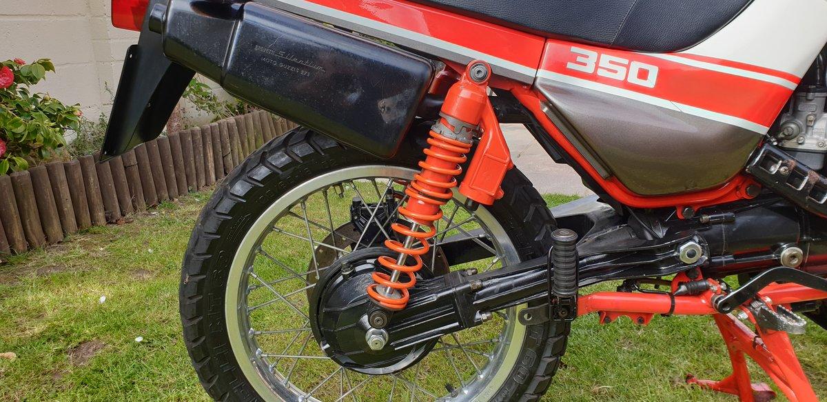 1992 Very rare moto guzzi NTX350.  11500 MILES. For Sale (picture 5 of 6)