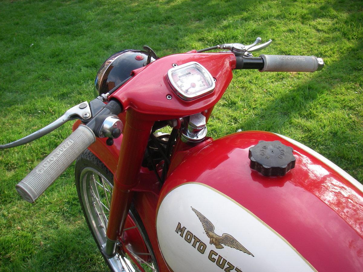 1957 Moto Guzzi Lodola 175cc OHC  SOLD (picture 6 of 6)