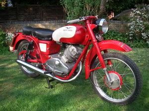 Moto Guzzi Lodola 175cc OHC
