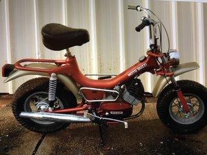 Moto guzzi monkey bike 1970s vintage