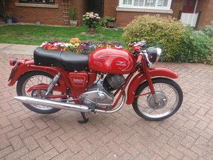 Moto Guzzi Lodola 235