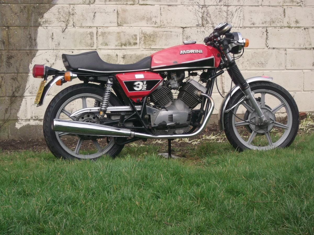 1978 Moto Morini 3 1/2 Sport 350 For Sale (picture 5 of 6)