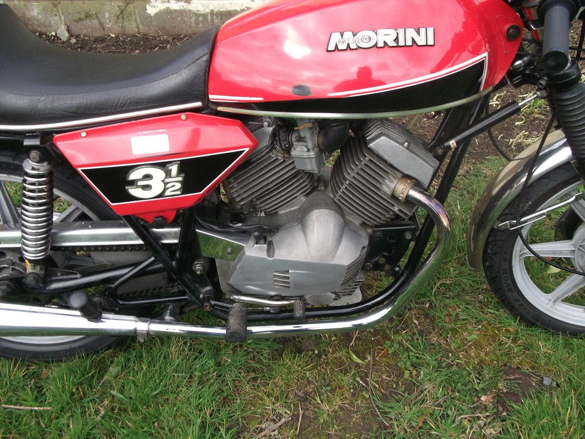 1978 Moto Morini 3 1/2 Sport 350 For Sale (picture 6 of 6)