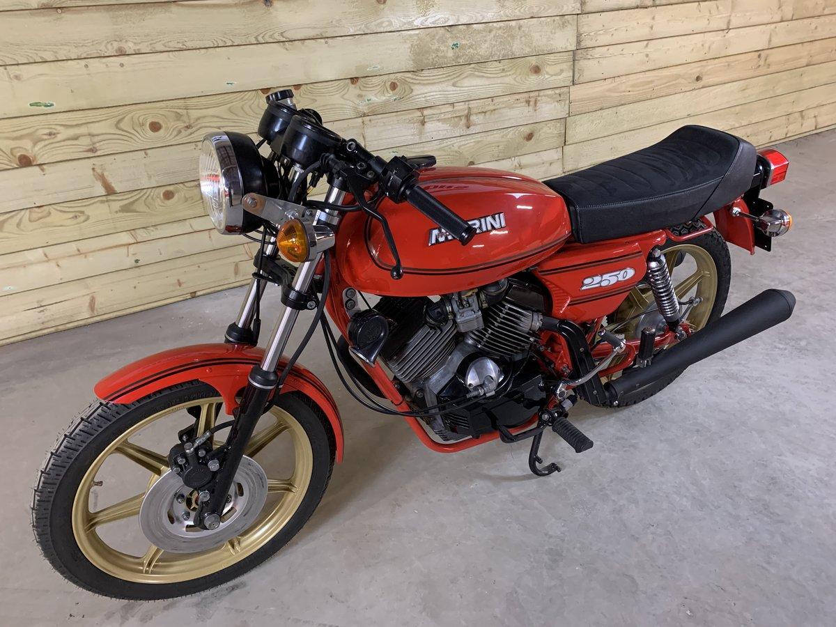 1982 MOTO MORINI 250 2C V TWIN For Sale (picture 5 of 6)