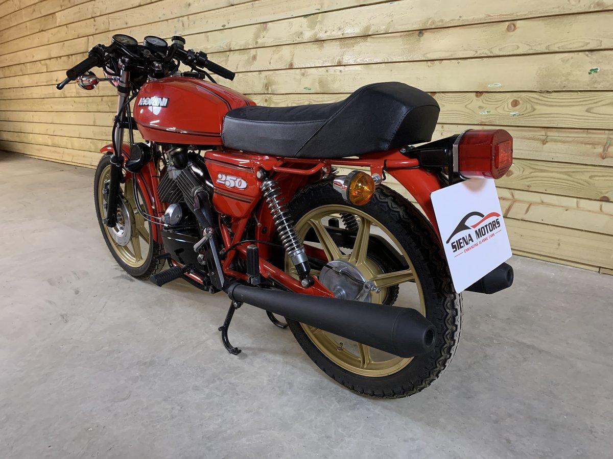 1982 MOTO MORINI 250 2C V TWIN For Sale (picture 6 of 6)