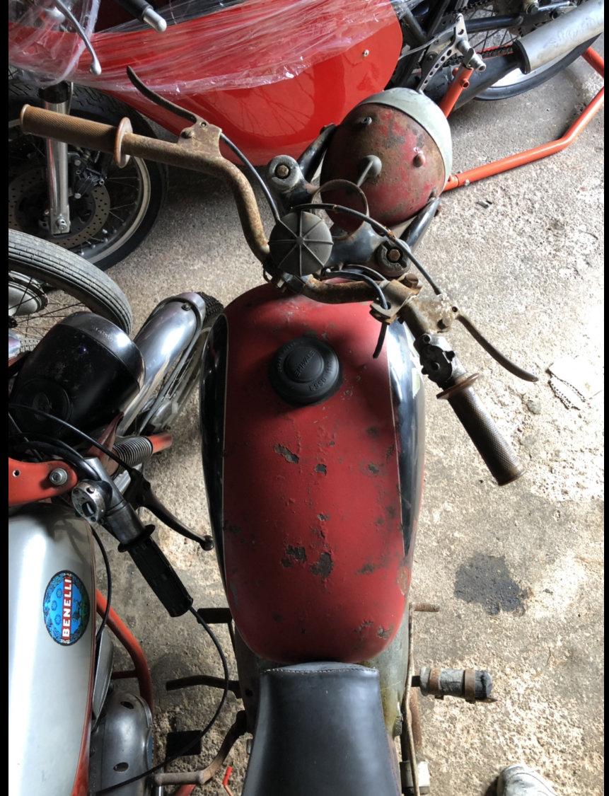 1959 Moto morini 125 classic project bike  For Sale (picture 3 of 5)